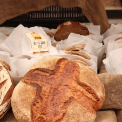fresh bread of SEO champions