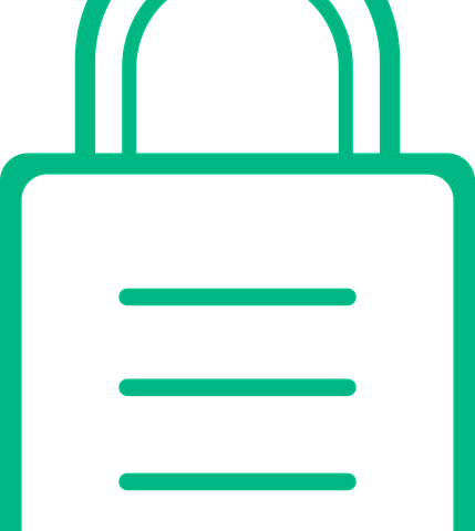 https lock sign